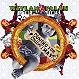 Coming For Christmas by Waylan St. Palan & The Magic Elves
