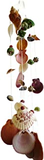 Moose546 Set of Two Multi Natural Seashells Hanging Ornaments Outdoor Indoor Mobile Wind Chime, 3