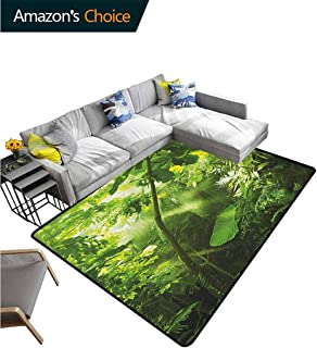 Plant Plaid Area Rug, Rain and Sun at Exotic Tropical Forest Jungle Undamaged Nature Brazil Rainforest, Durable Carpet Area rug - Living Dinning Room Bedroom Rugs and Carpets(6'x 9') Forrest Green