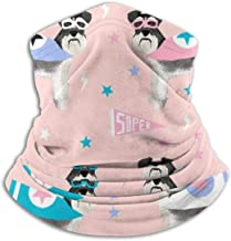Schnauzer Superhero Dog Dogs Cape Mask Superheroes Pink Unisex Winter Fleece Neck Warmer Gaiters Hairband Cold Weather Tube Face Mask Thermal Neck Scarf Outdoor UV Protection Party Cover