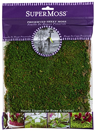 SuperMoss (21509) Sheet Moss Preserved, Fresh Green, 2oz
