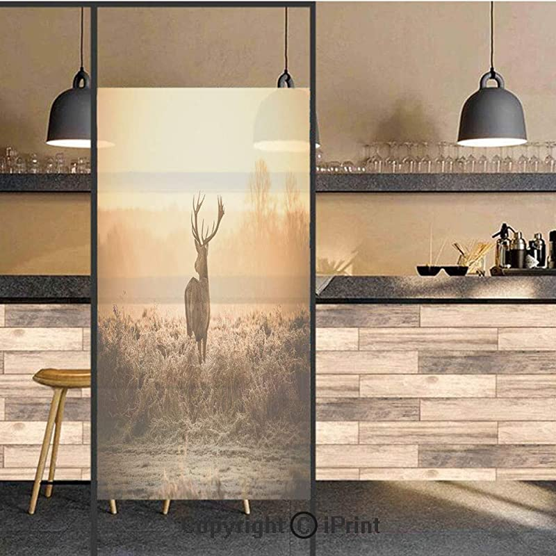 3D Decorative Privacy Window Films Red Deer In The Morning Sun Wild Nature Scenery Countryside Rural Heathers Decorative No Glue Self Static Cling Glass Film For Home Bedroom Bathroom Kitchen Office 2