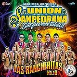 Las Rancheritas #10: No Compro Amores / La Vida Es una Copa de Licor / Con Música Romántica