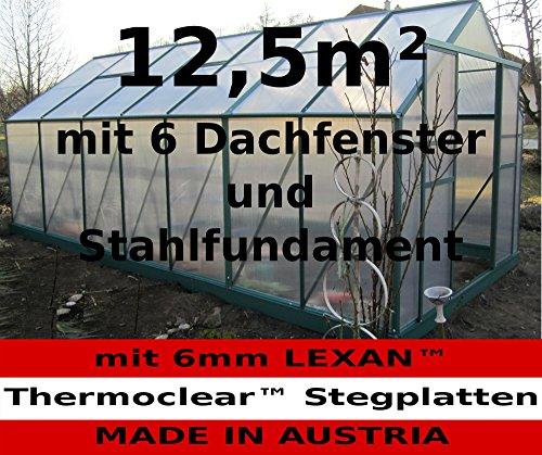 12,5m² PROFI ALU Gewächshaus Glashaus Treibhaus inkl. Stahlfundament u. 6 Fenster, mit 6mm Hohlkammerstegplatten - (Platten MADE IN AUSTRIA/EU) von AS-S