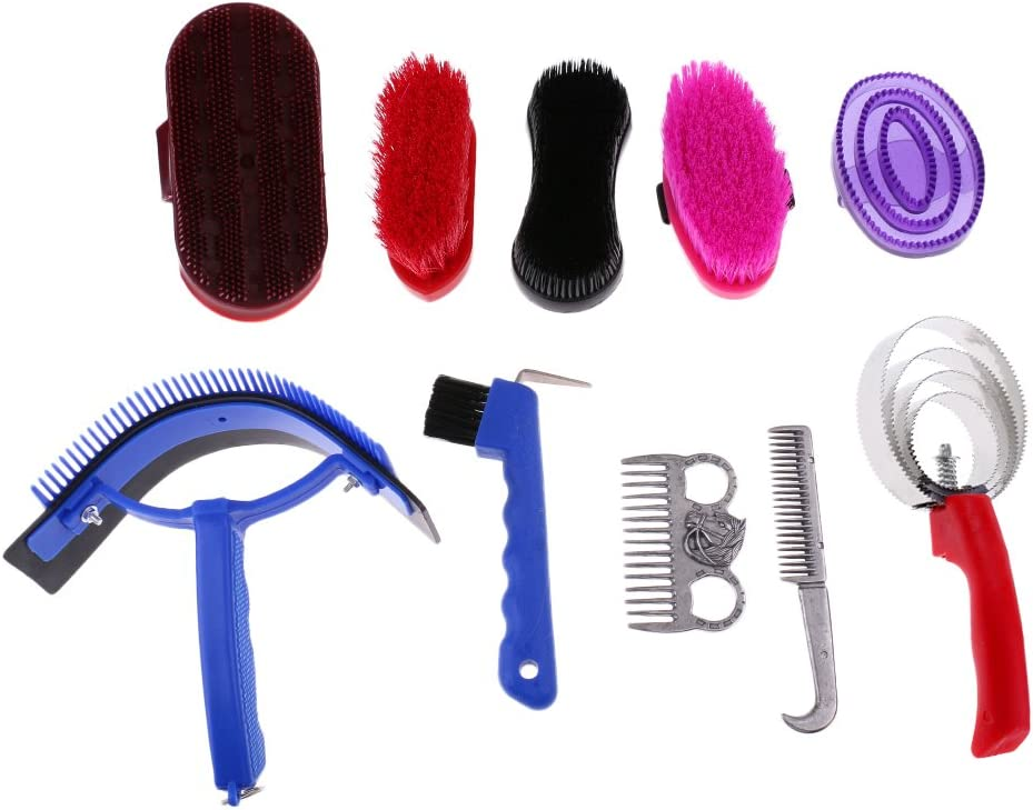 LEIPUPA Horse Grooming Kit 10 Piece Tool Care Bru Long Super Special SALE held Beach Mall Cleaning