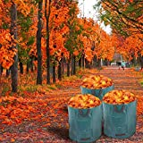 3x sacchi per rifiuti da giardino Sacchetto per foglie Sacchetto da giardino da 272 litri ...
