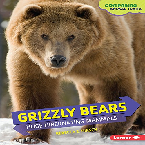 Grizzly Bears audiobook cover art