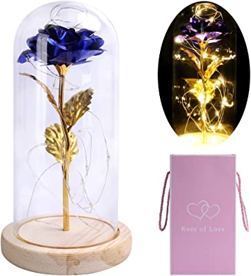HOHOTIME Artificial Flower Rose with LED Light, Blue Rose Forever in a Glass Dome with Led Light for Women, Girlfriend, Wife, Christmas, Wedding, Valentine's Day, Anniversary