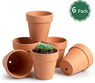 Best pots for african violets plants Reviews