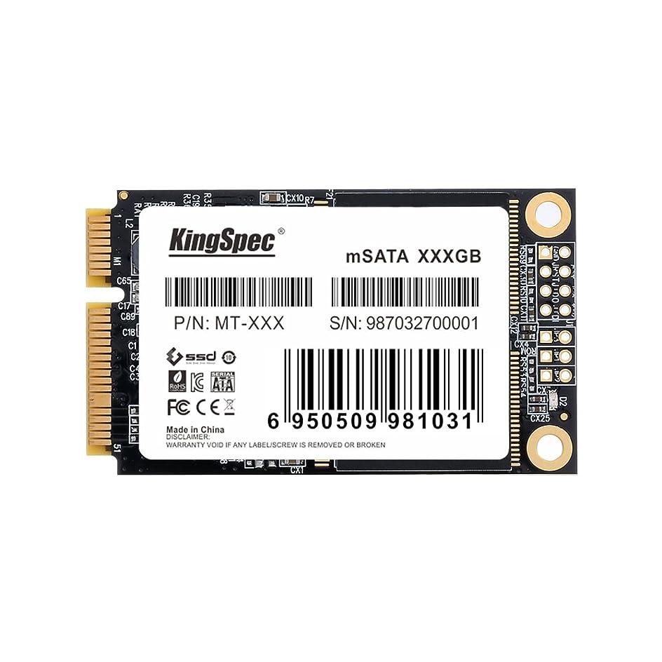 かわすジョットディボンドンホステスKingSpec 256GB mSATA3 MINI PCI-E MLC Solid State Drive 256gb mSATA