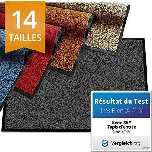 etm Tapis d'entrée série Premium | Tapis Antidérapant Absorbant & Lavable | Paillasson entrée Exterieur & Interieur | Anthracite 90x120cm