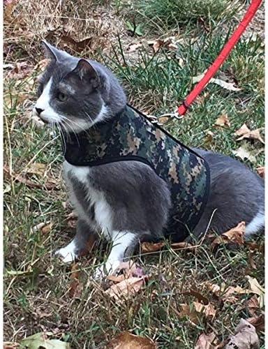 Regular store CrazyKFarms Kitty Holster Cat Harness Camo Green Max 84% OFF Sherwood -