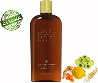 Lavée Organic Revive Rejuvinating Shampoo (8 oz) - Anti Hair Loss - Features organic