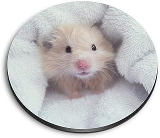 Destination 3837 Aimants ronds en MDF Motif hamster moelleux pour bureau, armoire et tableau blanc