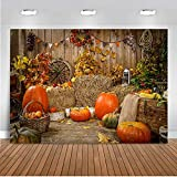 1. Material:The Vinyl Cloth,without Splice,seamless,computer-printed,very clear 2. Size:7x5FT (2.1m wide by 1.5m tall) 3. Usage:Fall Thanksgiving Party,Autumn Welcome Little Pumpkin Onederland party ,Indoor and outdoor decoration,graduation party ,we...