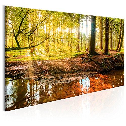 murando - Bilder Wald 140x70 cm Vlies Leinwandbild 1 TLG Kunstdruck modern Wandbilder XXL Wanddekoration Design Wand Bild - Baum Natur Landschaft c-B-0174-b-a