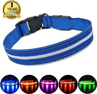 MASBRILL Collar LED Perro, Collar para Perro Luminoso Recargable y Impermeable, 3 Modos de Iluminación led y Tamaño Ajustable para Perros Pequeños Medianos Grandes(Azul S)