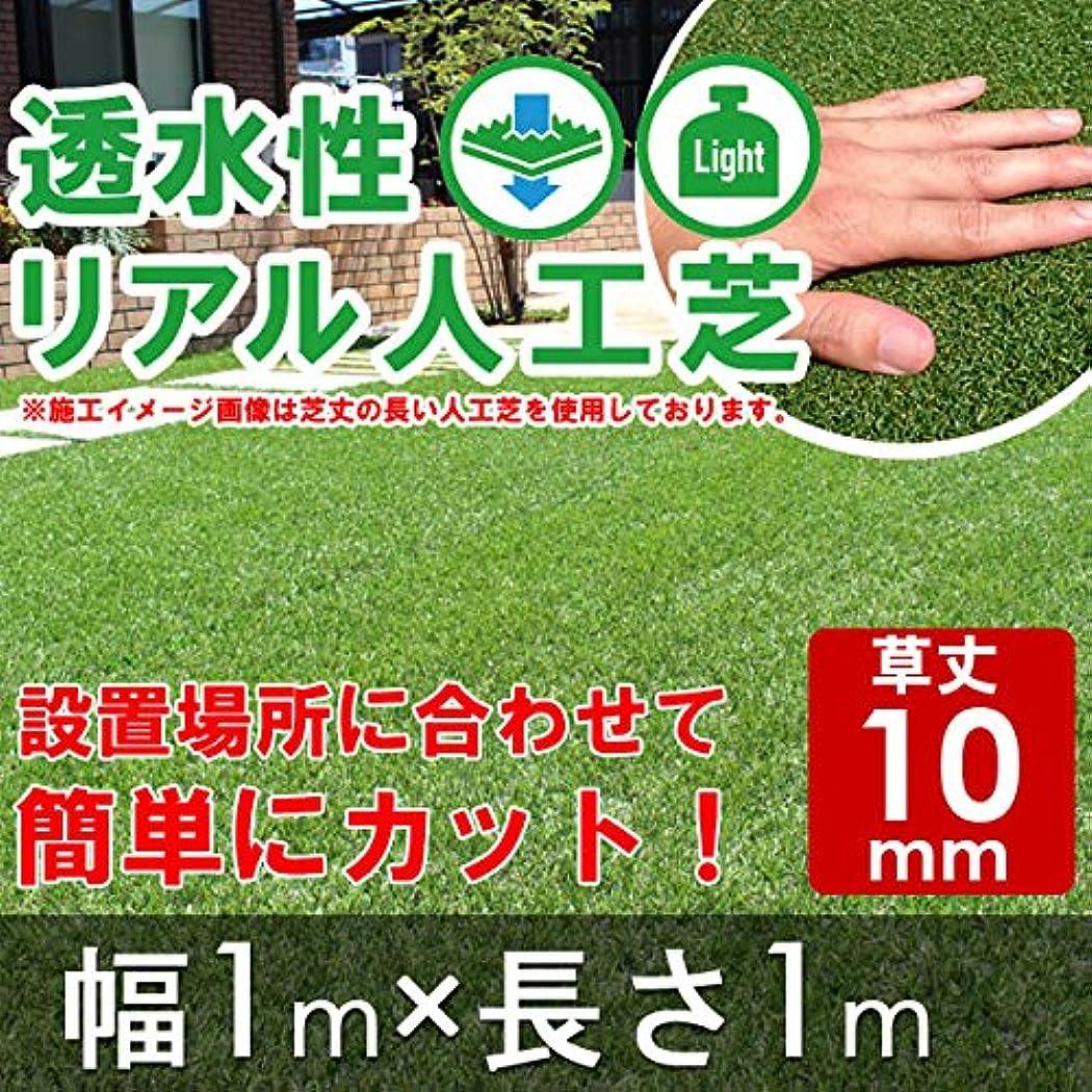 召喚する英語の授業があります仕立て屋透水性リアル人工芝 ロールタイプ 幅1m×長1m 【草丈10mm】