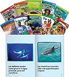 Teacher Created Materials - TIME for Kids Informational Text Readers (Spanish) Set 2 - 10 Book Set - Grade 1 -...