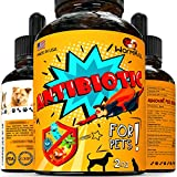 Best Cat Dewormers - Wormkill Natural Antibiotic for Dogs, Cats - Immune Review