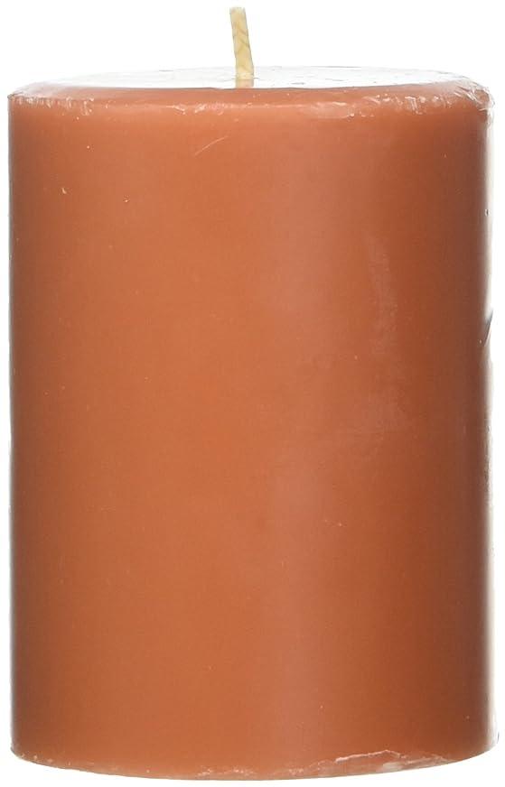 筋小包東部Northern Lights Candles Roasted Pumpkin FragranceパレットPillar Candle、3?x 4?