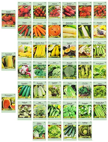 Set of 43 Assorted Vegetable & Herb Seeds - 43 Varieties - Create a Deluxe Garden All Seeds are Heirloom - 100% Non-GMO by Black Duck Brand