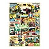Cavallini Decorative Wrap Poster, National Parks, 20 x 28 inch Italian Archival Paper (WRAP/NP)