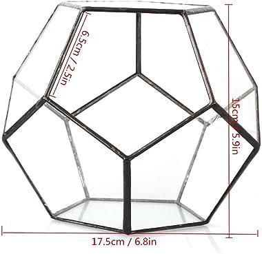Terrarium en forme de dodécaèdre et plaques de verre pentagonales pour plante Transparent, claire, Tail