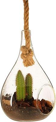 Florero decorativo, Portavelas, para Colgar, en el aire, Pedir con Cuerda de Cáñamo, Terrario, para Plantas Pequeñas, Cactus. Forma de gota de agua, Decoración del hogar, Jardín, Oficina