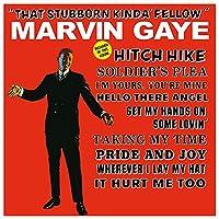 That Stubborn Kinda' Fellow [12 inch Analog]
