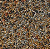 No-Till Cover Crop 13-Seed Mix (1 lb. Bag): [50% Clovers Plus Fenugreek, Vetch, Flax, Cowpeas, Buckwheat, Forage Peas, Millet, Lentils, Crimson Clover, Sweet Yellow, White Clover, Medium Red Clover]