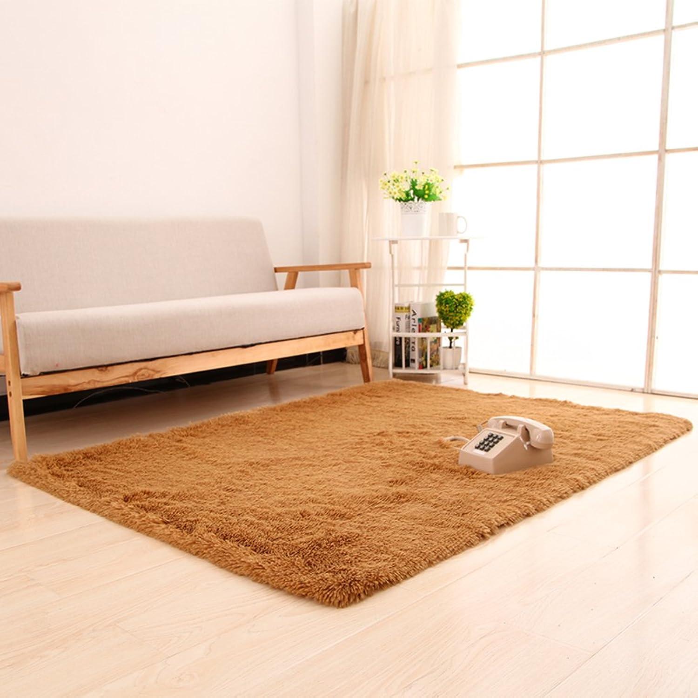 Silk Wool Thicken Blanket Bedroom Living Room Bedside Blanket Dirty Resistant Mat Non-Slip Water-Absorbing Mat-B 140x200cm(55x79inch)