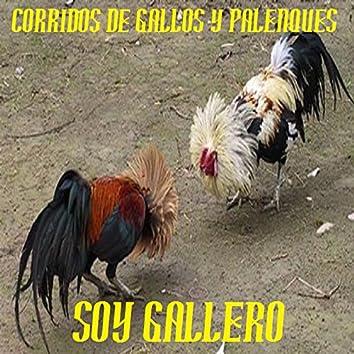 SOY GALLERO