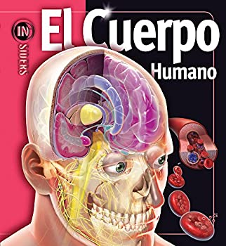 Cuerpo Humano/ Human Body (Insiders) (Spanish Edition) 9707187158 Book Cover