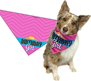 gift ideas for dogs birthday