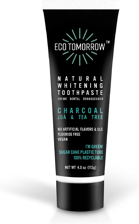EcoTomorrow Natural Whitening Charcoal Dedication Toothpaste Fluoride-Free Atlanta Mall