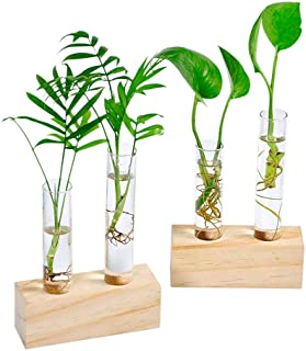 Ivolador Crystal Glass Double Test Tube Vase in Wooden Stand Flower Pots for Hydroponic Plants Office Home Decoration