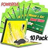 Dekugaa Mouse Trap, Mouse Traps Glue,Rat/Mice Traps Sticky Boards, Strongly Adhesive,Mouse Traps That Work Capturing Indoor and Outdoor Rat Cockroach Spider 10 Pack