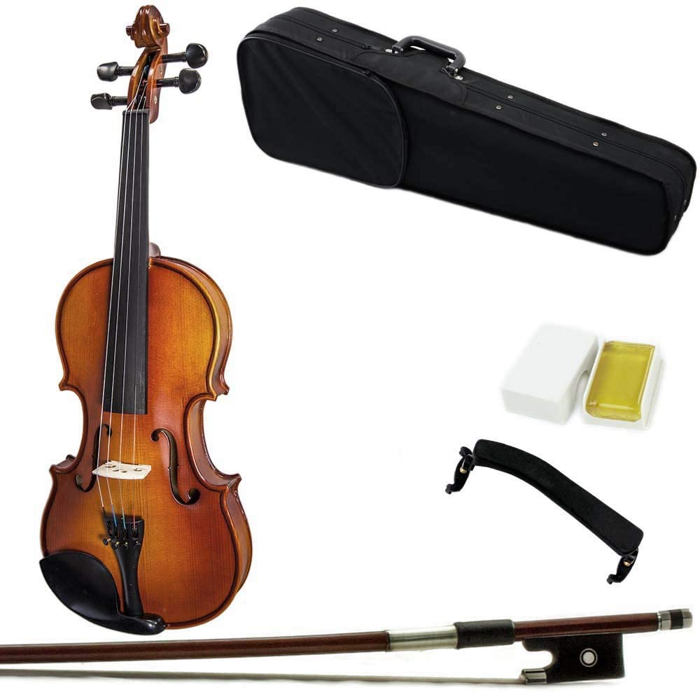 Paititi 16'' Size Outstanding Upgrade Max 44% OFF Solid Wood Viola Cas Ebony Fitted With