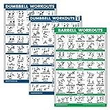 Palace Learning 3er-Pack: Hantel-Trainingsposter Volume 1 & 2 + Langhantel-Übungen – Set mit 3 Trainingstabellen, laminiert, 18