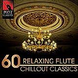 Flute Concerto in D Minor, Wq. 22, H. 426: II. Un Poco Andante