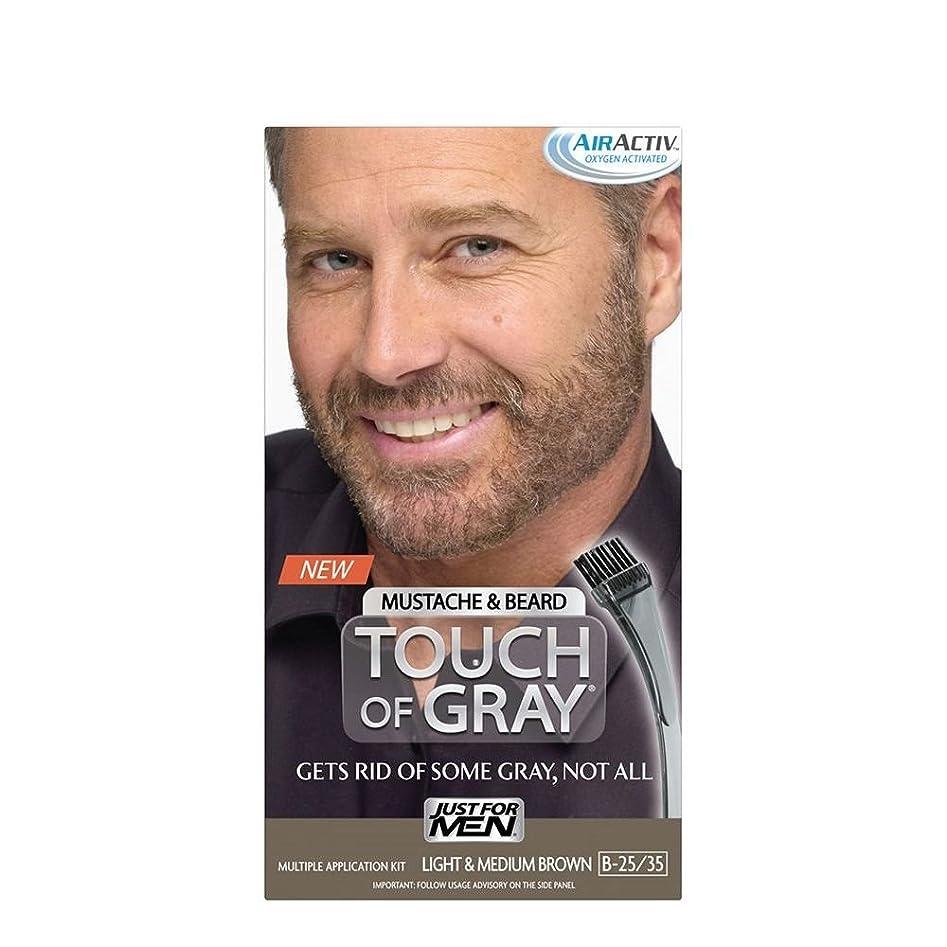 はがき買収気体のJust for Men 灰色のブラシ-で口ひげ&ヒゲの色キット、ライト&ミディアムブラウンの感触