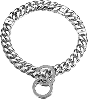cuban link dog choker