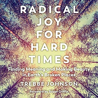 Radical Joy for Hard Times cover art