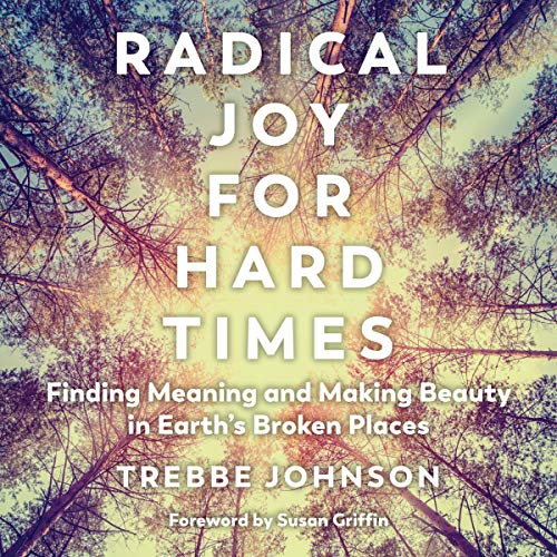 Couverture de Radical Joy for Hard Times