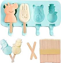 Miystn Miystn Ice Lolly Maker, Popsicle Molds, Ice Lolly Molds met 1 deksel en 50 sticks, Creative DIY Ice Cream Dessert P...