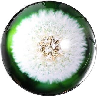 هانور K9Crystal ورق الوزن الهندباء العشبية الزجاج غلوب نصف الكرة الأرضية لوازم مكتب الديكور 2.7 بوصة (dandelion3)