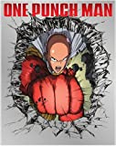 One - Punch Man Combo Pack (BD/DVD) [Blu-ray]
