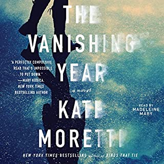 The Vanishing Year cover art