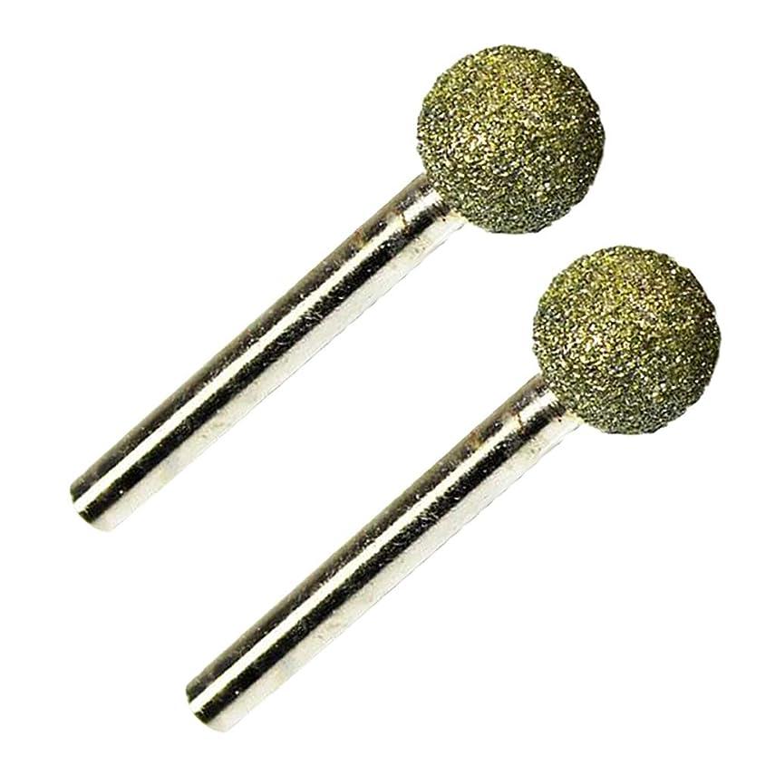 あからさま錫国旗ダイヤモンドビット 研削ビット 円筒形ヘッド 2個 ダイヤモンドマウントポイント 研磨仕上げ用 耐久性